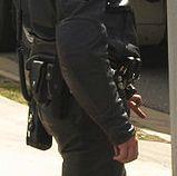449px-SA_police_force