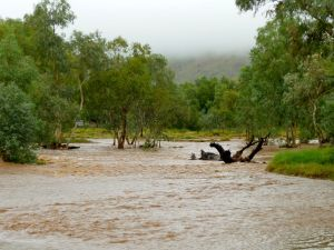 todd river raging