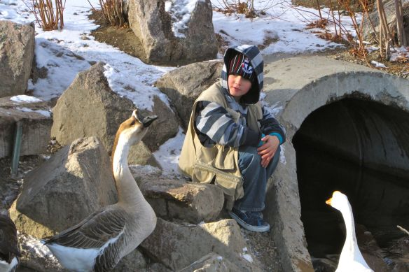The geese at Sand Lake are quite vocal. Here my son, Eddie, checks one out.