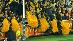 Fans of Melbourne's Richmond Tigers
