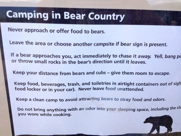 How to camp with bears in Colorado.
