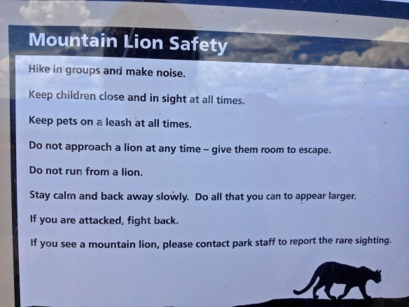Mountain Lion rules
