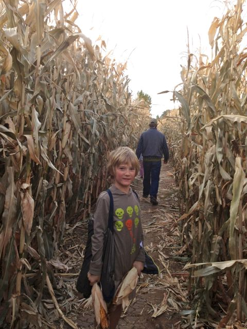 My son, Eddie in the corn maze in Cañon City.