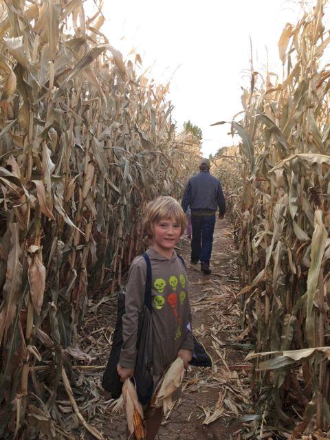 My son, Eddie in the corn maze in Cañon City.