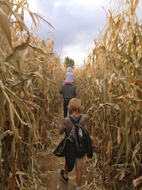 Children of the corn.