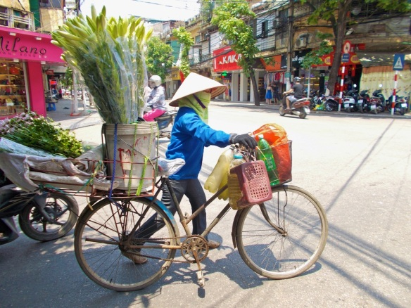 Woman with plants on bike in hanoi