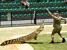 The late Steve Irwin, aka, The Crocodile Hunter. Photo by: Richard Giles