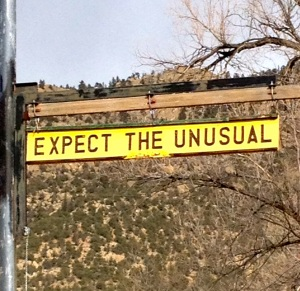 expect the unusual