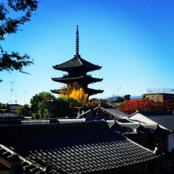 pagoda with leaves in kyoto